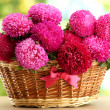 Pink aster flowers in basket on green background — Stock Photo #13730748