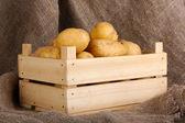Batatas maduras em caixa de madeira na demissão — Fotografia Stock