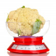 Stock Photo: Fresh cauliflower in kitchen scales isolated on white