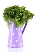 Purple pitcher with parsley and dill isolated on white — Stock Photo