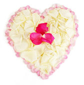 Beautiful heart of white rose petals surrounded by pink petals isolated on — Stock Photo