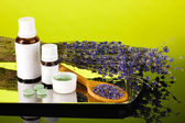 Bottles of medicines and herbs on green background. concept of homeopathy — Stock Photo