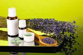 Flaschen von arzneimitteln und kräutern auf grünem hintergrund. konzept der homöopathie — Stockfoto