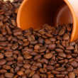 Coffee beans and cup close-up — Stock Photo #13847478