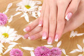 Woman hands with french manicure and flowers in bamboo bowl with water — Foto Stock