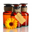 Medicine bottles and beautiful calendula flower, isolated on white — Stock Photo #13851878