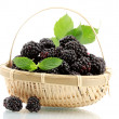 Beautiful blackberries with leaves in basket isolated on white — Stock Photo