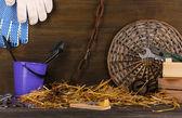мышеловка с куском сыра в сарае на деревянных фоне — Стоковое фото