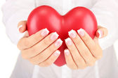 Red heart in woman's hands, on white background close-up — 图库照片