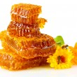 Sweet honeycomb with honey, bee and flowers, isolated on white — Stock Photo #13870460