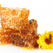 Sweet honeycomb with honey, bee and flower, isolated on white - Stock Photo
