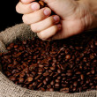 Coffee beans in hand on dark background - Stock Photo
