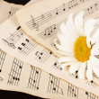Musical notes and flower on wooden table — Stock Photo