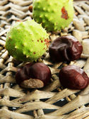 Green chestnuts on wicker background — Stock Photo