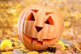 Halloween pumpa och höstlöv, på gul bakgrund — Stockfoto