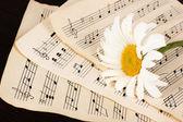 Muzieknoten en bloem op houten tafel — Stockfoto