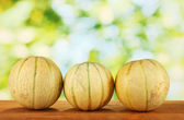 Sweet melons on green background close-up — Stock Photo