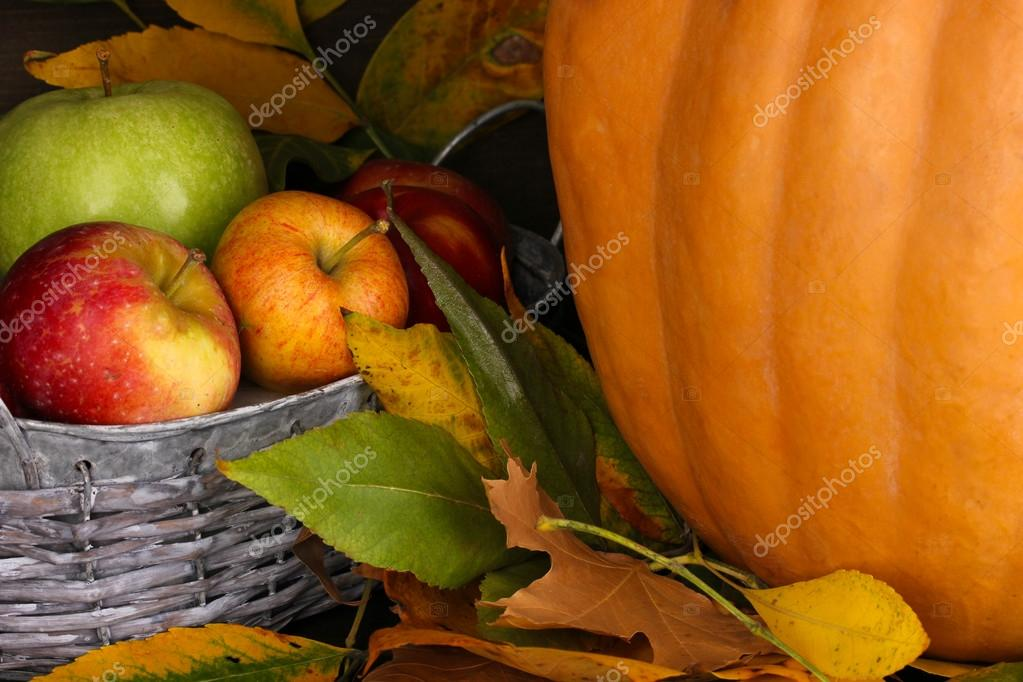 Excellent autumn still life with pumpkin on wooden table on wooden background close-up  Stock Photo #13893105