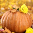 Pumpkin and autumn leaves, on yellow background — Stock Photo #13925266