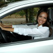 Beautiful young woman in car — Stock Photo #13927021