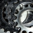 Group of metal cogwheels — Stock Photo #13927771