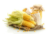 Fresh corn and bags with dry corn, isolated on white — Foto de Stock