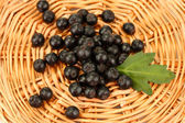 Chokeberry with green leaf on wicker mat close-up — Stock Photo