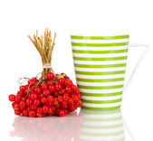 Tea with red viburnum isolated on white — Stock Photo