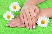 Woman hands with french manicure and flowers on green towel — Stockfoto
