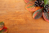 Bright autumn leaves and wild berries, on wooden background — Stock Photo
