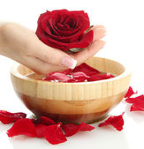 Woman hand with wooden bowl of water with petals, isolated on white — Stock Photo