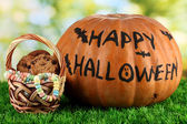 Halloween pumpkin on grass on bright background — Stock Photo