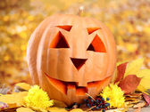 Halloween pumpkin and autumn leaves, on yellow background — Stock Photo