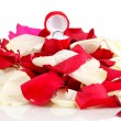 Beautiful box with ring on red, white and pink rose petals isolated on whit - Photo