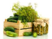 Fresh cucumbers in wooden box, pickles and dill isolated on white — Stok fotoğraf