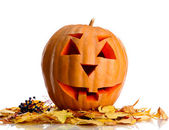 Halloween pumpkin and autumn leaves, isolated on white — Stock Photo