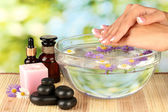 Spa treatments for female hands, on bright green background — Stock Photo