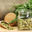 Jar of green cardamom with rocket on canvas background close-up — Stock Photo
