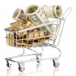 Shopping trolley with dollars and Ukrainicoins, isolated on white — Stock Photo #14042845