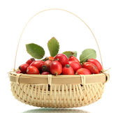 Ripe hip roses with leaves in basket, isolated on white — Stock Photo