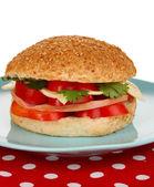 Apetitoso sándwich en placa color aislada en blanco — Foto de Stock