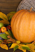 Excellent autumn still life with pumpkin on wooden table on wooden backgrou — Stock Photo