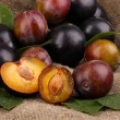 Rip plums on sacking — Stock Photo #14302357