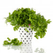 Colorful pot with parsley and dill isolated on white - Stock Photo