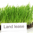 Green grass with ground as concept of land sale isolated on white — Stock Photo #14304401