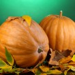 Two ripe orange pumpkins with yellow autumn leaves on green background - Zdjęcie stockowe