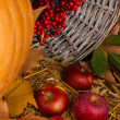 Excellent autumn still life with pumpkin on wooden table on wooden background close-up - Stock Photo