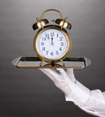 Hand in glove holding silver tray with alarm clock on grey background — Stock Photo