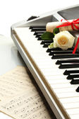 Background of piano keyboard with flower — Stock Photo