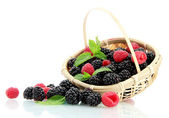 Beautiful berries with leaves in basket isolated on white — Stock Photo